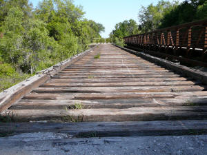 Inactive railroad tracks along the Legacy Trail